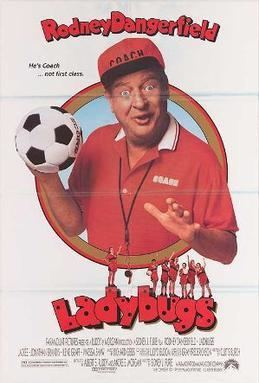 Ladybugs (film) movie poster