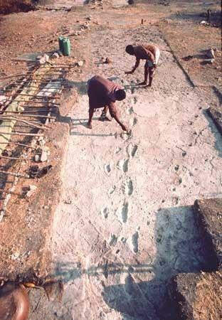Laetoli Laetoli anthropological and archaeological site Tanzania