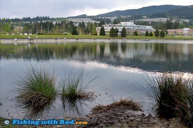 Lafarge Lake fishingwithrodcomarticlesregiontwoimageslafa
