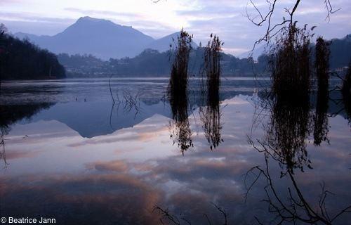 Lago di Muzzano wwwpronaturatichimmaginiriserveriflessiMuzz
