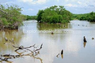 Laguna de Tacarigua Laguna de Tacarigua Venezuela ExplorandoRutascom