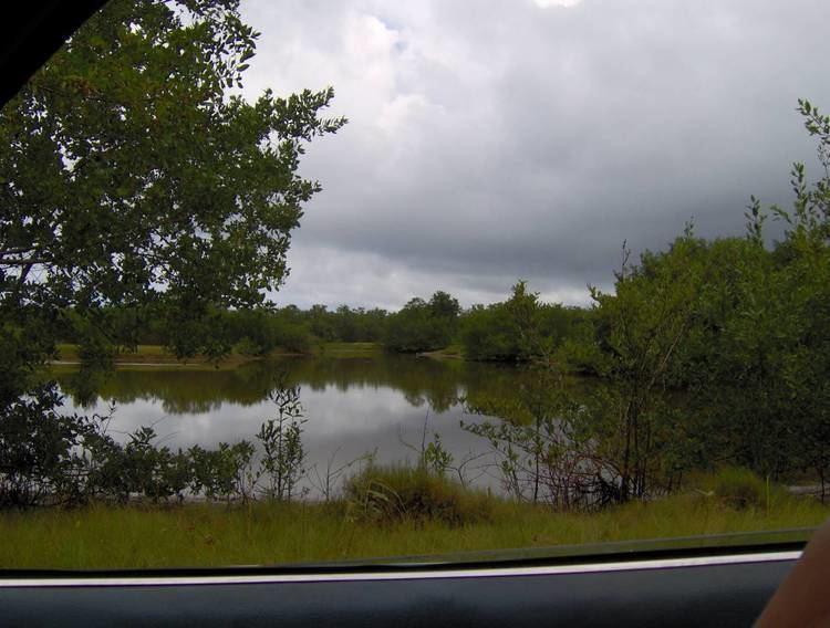 Laguna de Tacarigua atardecer Laguna de Tacarigua Venezuela Tuya