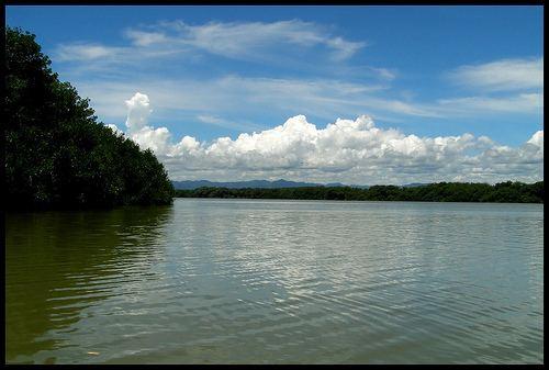 Laguna de Tacarigua Flickriver Photoset 39Laguna de Tacarigua39 by Kevin Vsquez