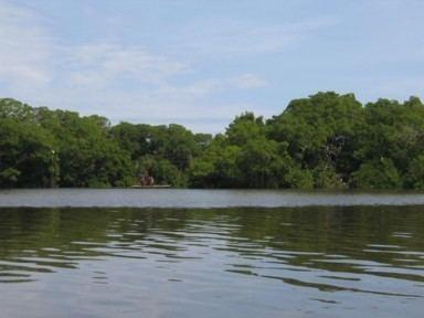 Laguna de Tacarigua Laguna de Tacarigua Edo Miranda Venezuela