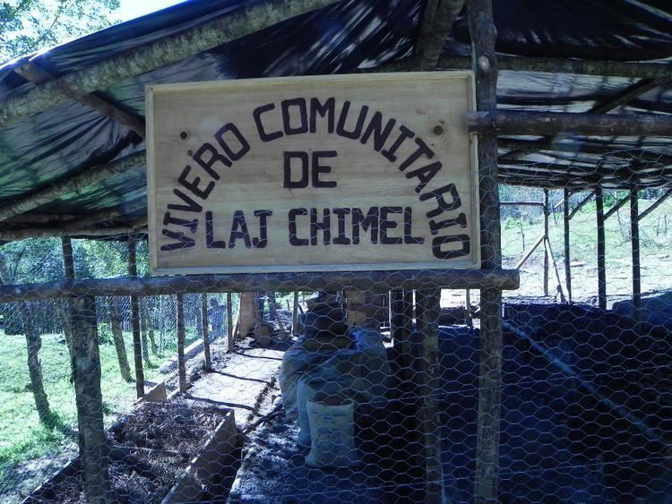 Laj Chimel NEWS AND ONGOING PROJECTS