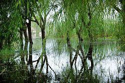 Lake Conache httpsuploadwikimediaorgwikipediacommonsthu