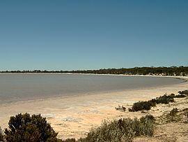 Lake Gilles Conservation Park httpsuploadwikimediaorgwikipediacommonsthu