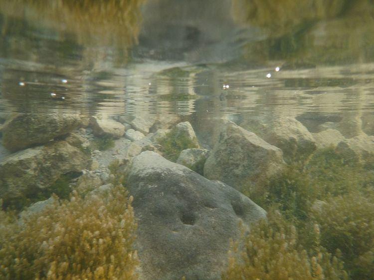 Lake Indawarra