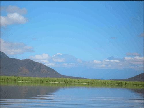 Lake Jipe wwwletsgokenyacomuploadimageslakejipe2png
