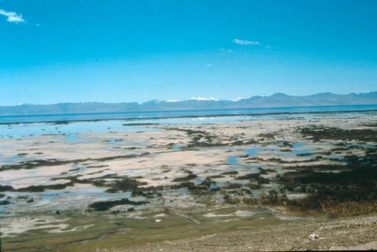 Lake Junin wwwicdpicdponlineorguploadprojectslakejuni