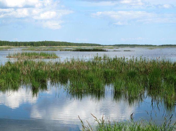 Lake Koosa veekogudemueepicsdisplayaf1355ced78c4acb1138