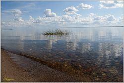 Lake Kubenskoye httpsuploadwikimediaorgwikipediacommonsthu