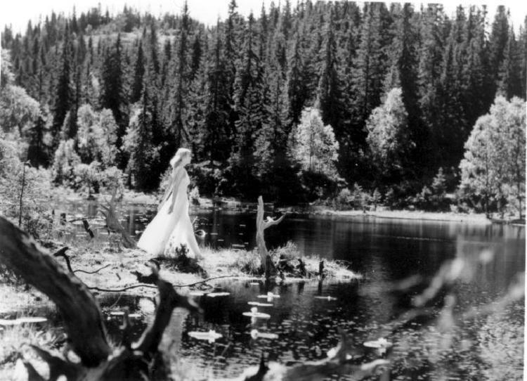 Lake of the Dead httpshorrorpediadotcomfileswordpresscom2014