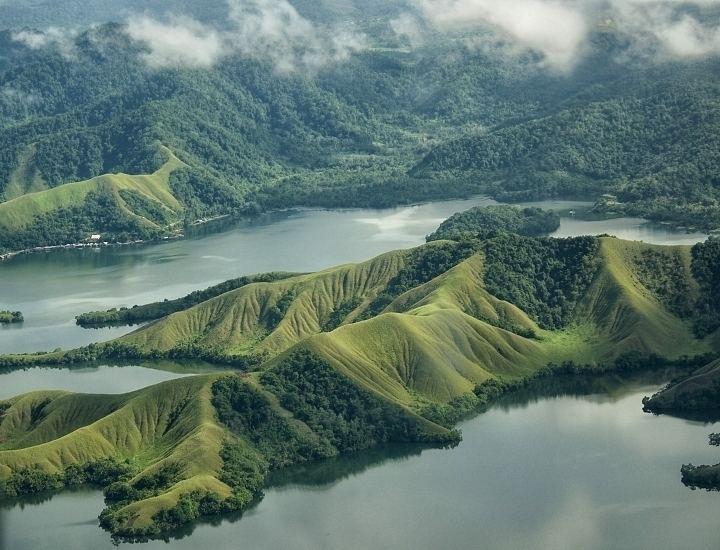 Lake Sentani rainbowfishangfaqldorgauLakeSentaniGLjpg