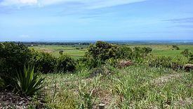 Lallmatie httpsuploadwikimediaorgwikipediacommonsthu