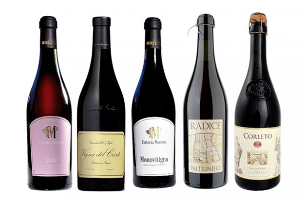Lambrusco Lambrusco wine Five of the best Decanter