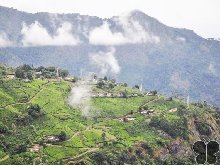 Lamb's Rock Trek to Lamb39s Rock Coonoor Tamil Nadu