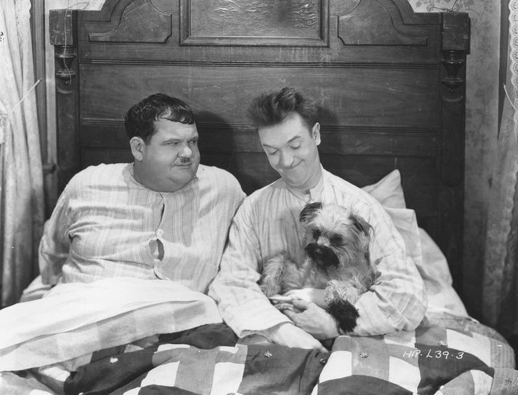 Laughing Gravy Laurel and Hardy on Twitter Laughing Gravy the dog also appeared