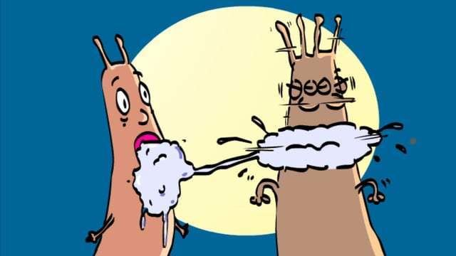 Laurence Arcadias Bavure Laurence Arcadias Animation