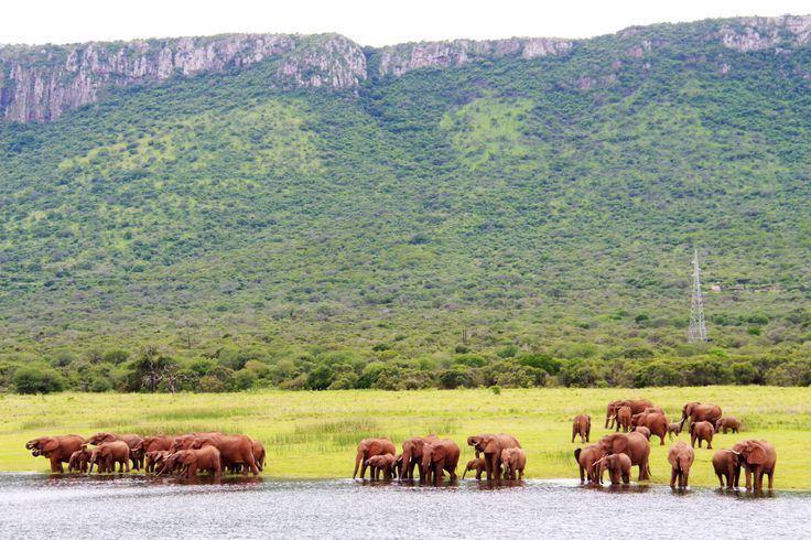 Lebombo Mountains Lebombo mountains MKUZI Game Reserve Jozini Dam Pinterest
