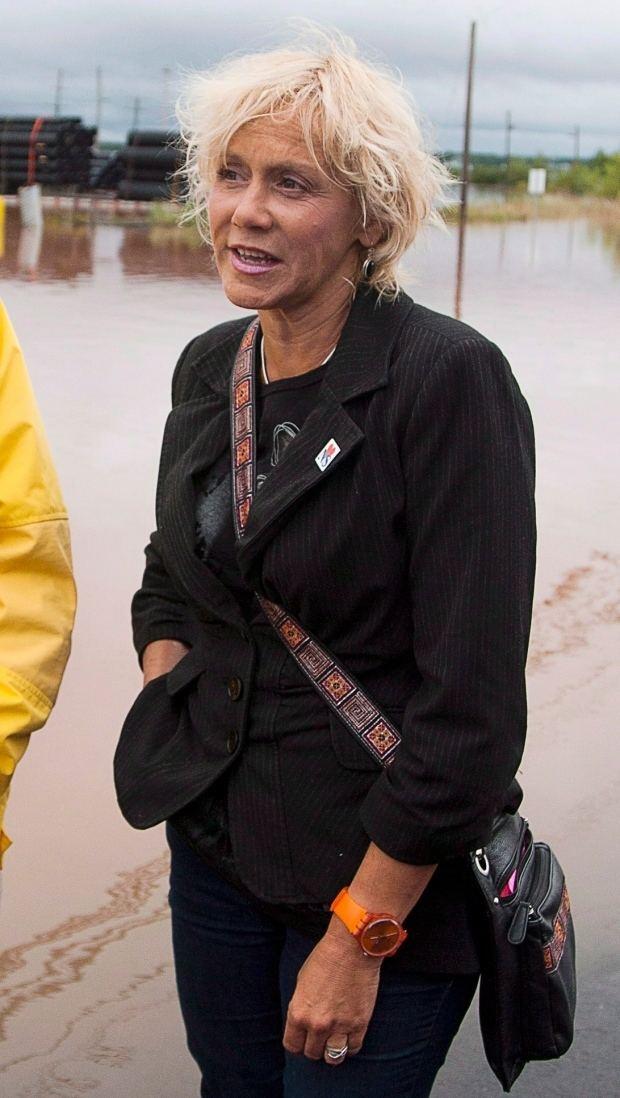 Lenore Zann Nova Scotia MLA Lenore Zann alleges cyberbullying after