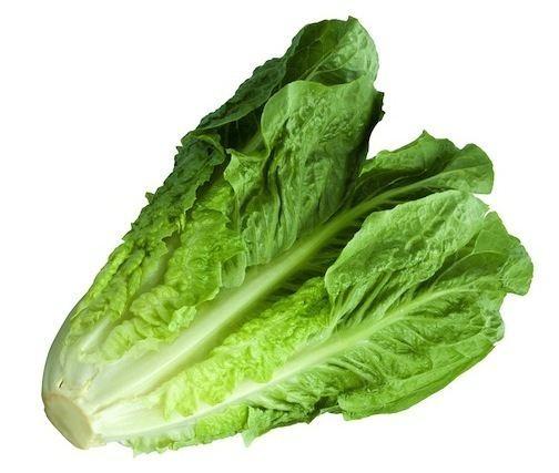 Lettuce Lettuce A New Spin