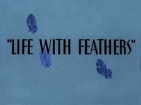 Life with Feathers httpsiytimgcomvige9F92XQd8Yhqdefaultjpg