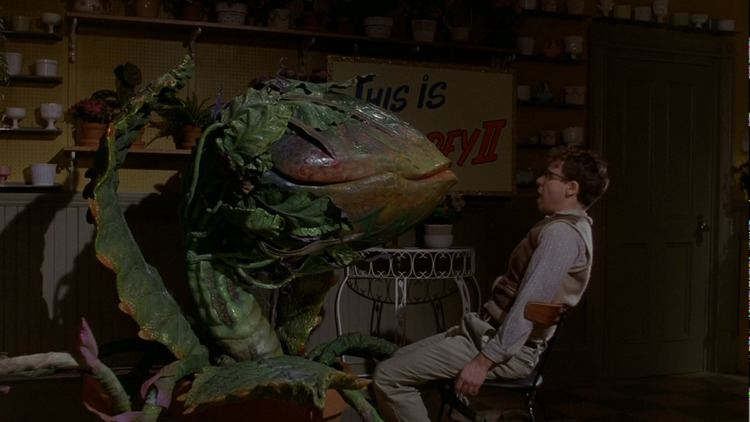 Little Shop of Horrors (1986 film) Movie Review Little Shop of Horrors 1986