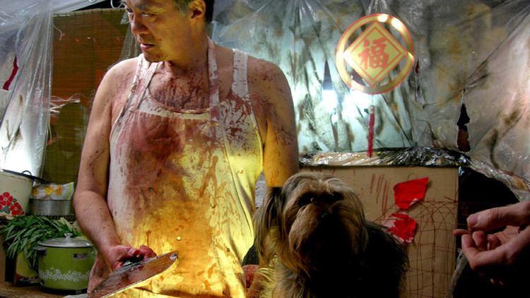 Live Feed: una cine de gore extremo al estilo de Hostel