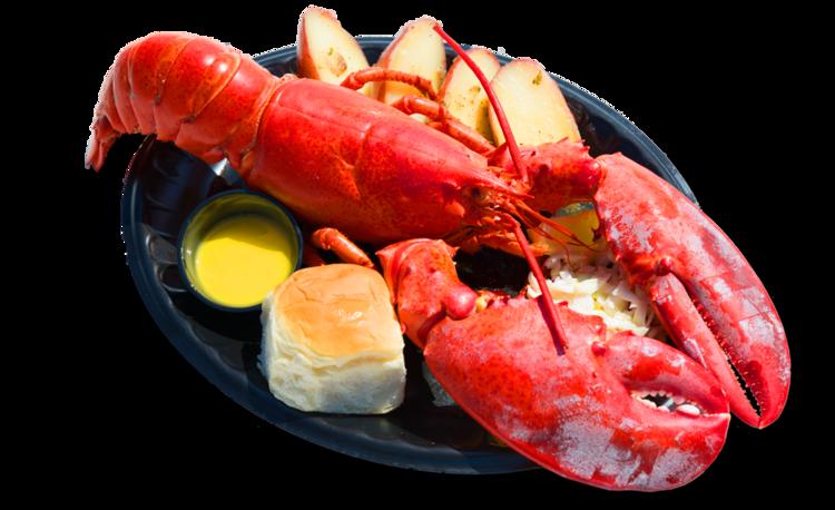 Lobster Lobster Festival