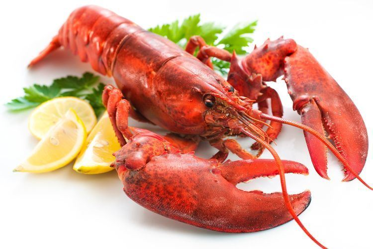 Lobster Starmarket Sustainable Seafood