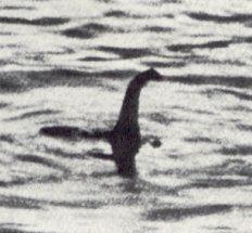 Loch Ness Monster httpsuploadwikimediaorgwikipediaen55eHoa