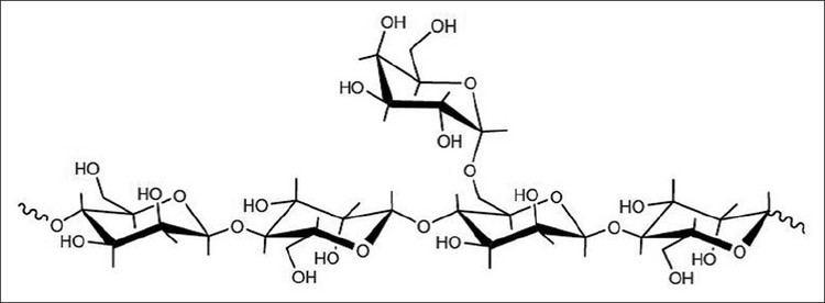 Locust bean gum Locust bean gum Exploring its potential for biopharmaceutical