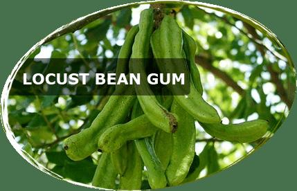 Locust bean gum Locust Bean Gum Powder Altrafine Gums