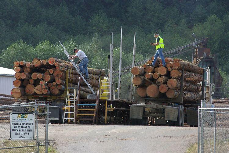 Log scaler