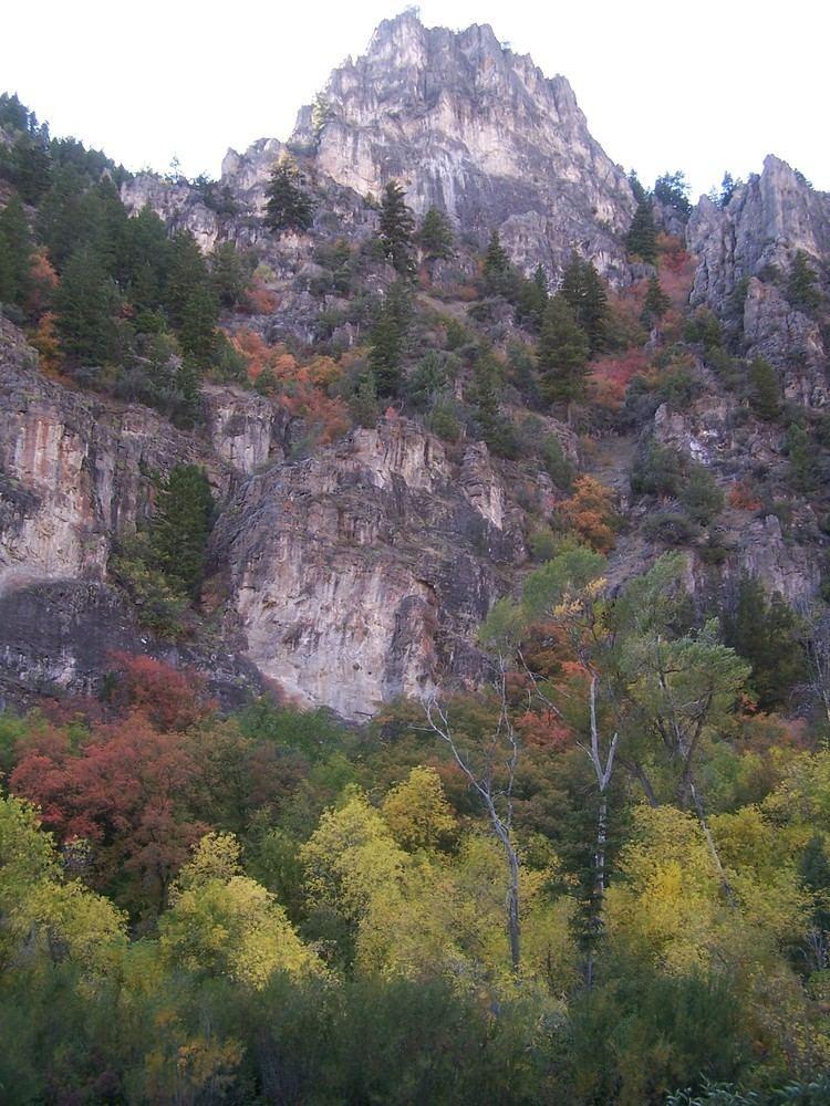 Logan Canyon Logan Canyon Wikipedia