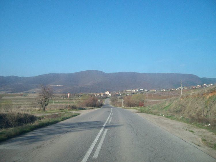 Logodazh