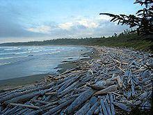 Long Beach (British Columbia) httpsuploadwikimediaorgwikipediacommonsthu