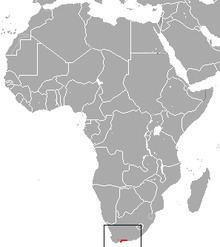 Long-tailed forest shrew httpsuploadwikimediaorgwikipediacommonsthu