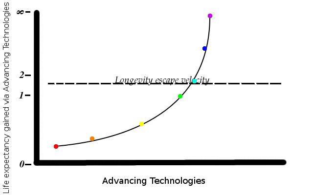 Longevity escape velocity