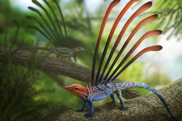 Longisquama The odd little reptiles of the Triassic forests Earth Archives