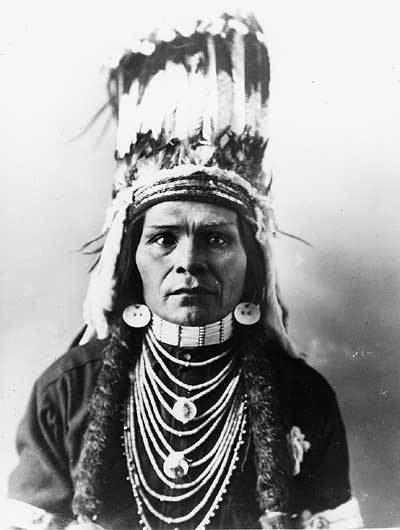 Looking Glass (Native American leader) httpswwwnpsgovparkhistoryonlinebooksnepe