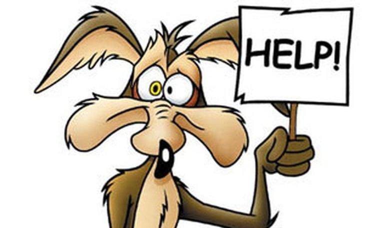 LoOney Looney Tunes on Pinterest Bugs Bunny Yosemite Sam and