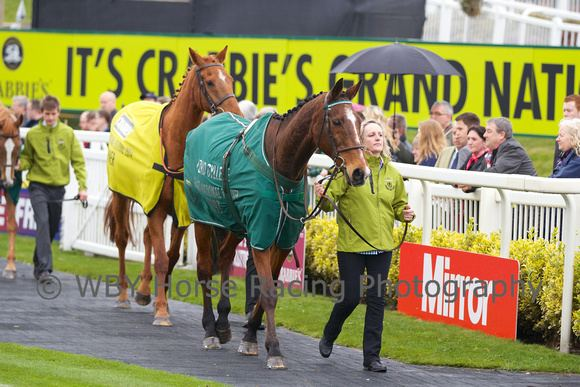 Lord Gyllene WBY Horse Racing Photography Crabbies Grand National 2014 Lord