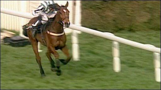 Lord Gyllene BBC Sport Horse Racing Archive Lord Gyllene wins Monday National