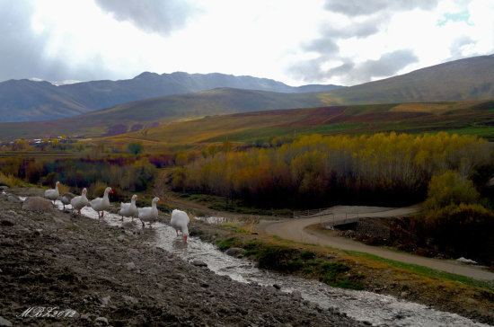 Lorestan Province Beautiful Landscapes of Lorestan Province