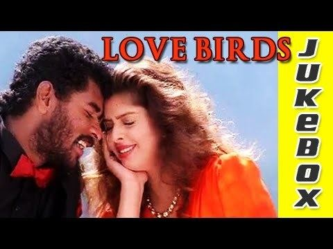 Love Birds (1996 film) Love Birds Tamil Songs Jukebox A R Rahman Hits Valentines Day