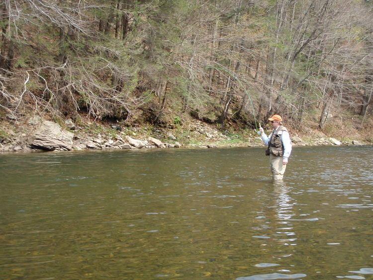 Loyalsock Creek Loyalsock Creek Southern Tier Fly Fisher