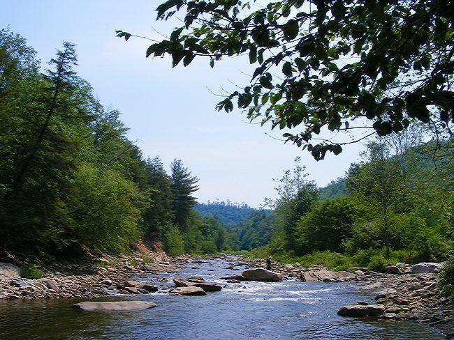Loyalsock Creek Loyalsock Creek Pennsylvania