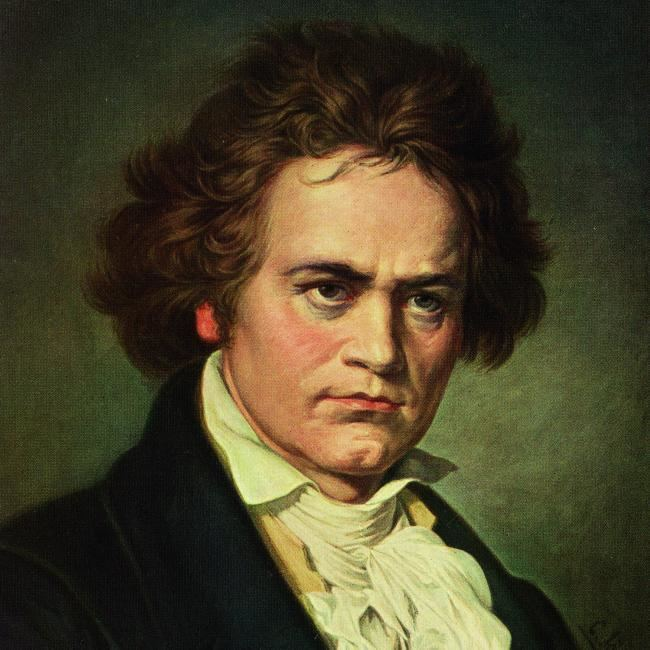 Ludwig van Beethoven Ludwig van Beethoven Biography Life of German Composer